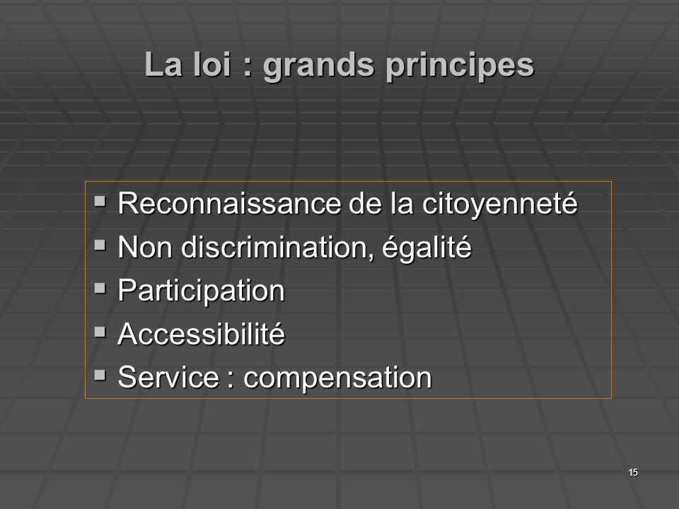15 La loi : grands principes Reconnaissance de la citoyenneté Reconnaissance de la citoyenneté Non discrimination, égalité Non discrimination, égalité