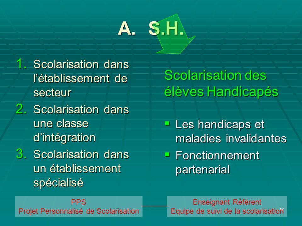 17 A. S.H. Les handicaps et maladies invalidantes Les handicaps et maladies invalidantes Fonctionnement partenarial Fonctionnement partenarial Scolari