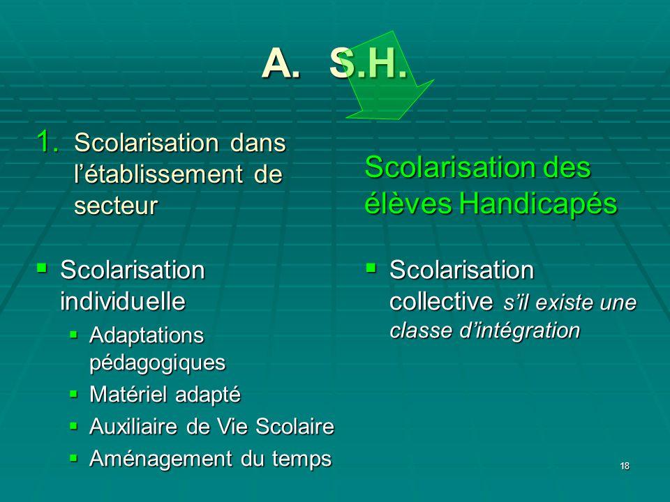 18 A. S.H. Scolarisation collective sil existe une classe dintégration Scolarisation collective sil existe une classe dintégration Scolarisation des é