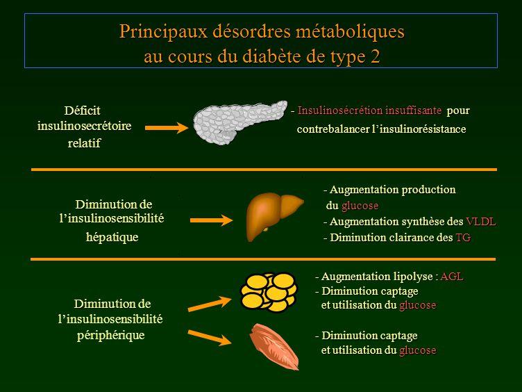Principaux désordres métaboliques au cours du diabète de type 2 - Augmentation production du glucose du glucose - Augmentation synthèse des VLDL - Dim