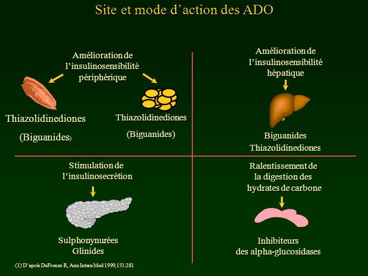 Site et mode daction des ADO (1) Daprès DeFronzo R, Ann Intern Med 1999;131:281 Thiazolidinediones (Biguanides ) Stimulation de linsulinosecrétion Amé