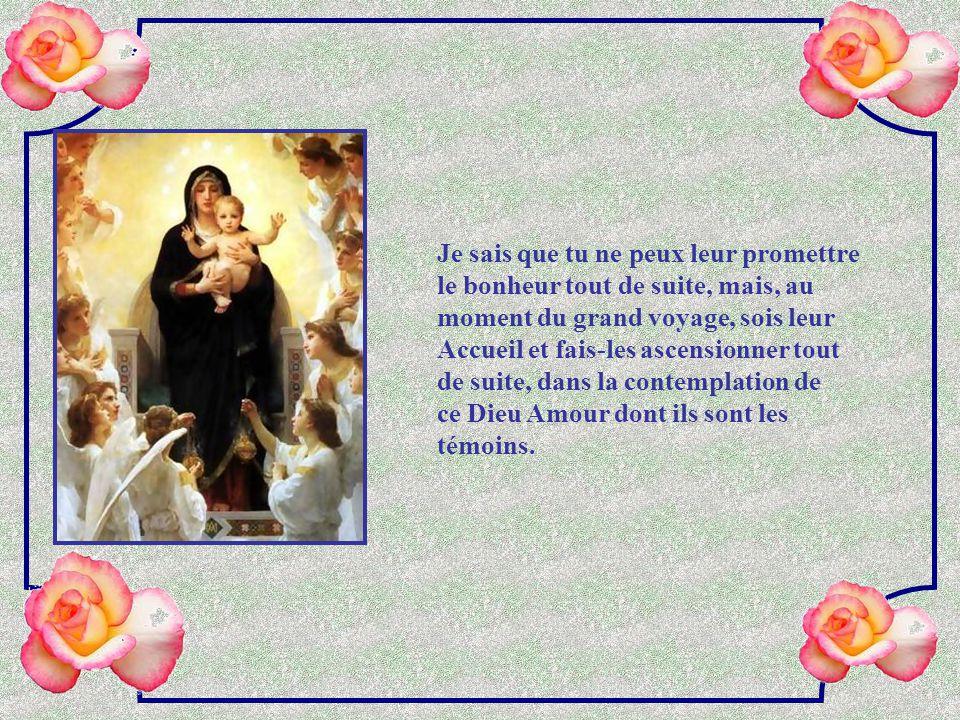Je sais que tu ne peux leur promettre le bonheur tout de suite, mais, au moment du grand voyage, sois leur Accueil et fais-les ascensionner tout de suite, dans la contemplation de ce Dieu Amour dont ils sont les témoins.