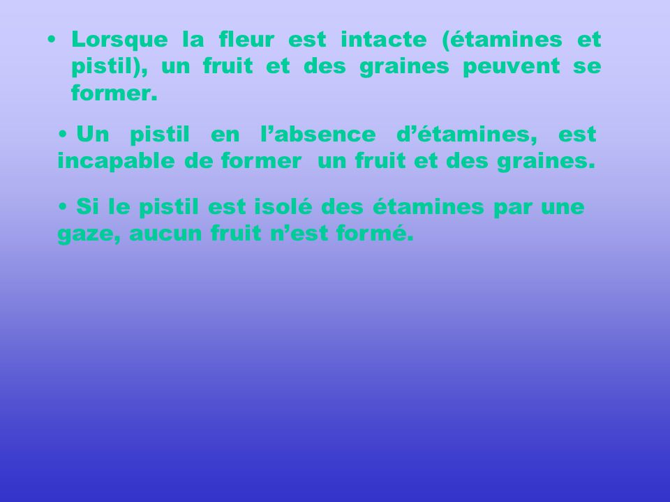Quelles sont les parties de la fleur indispensables à la formation dun fruit et de ses graines.