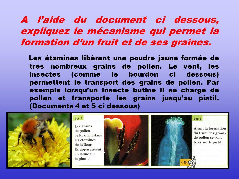 A laide du document ci dessous, expliquez le mécanisme qui permet la formation dun fruit et de ses graines.