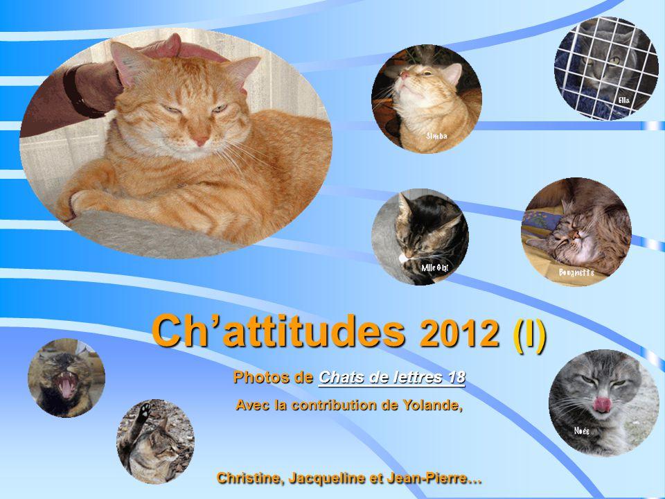Chattitudes 2012 (I) Photos de Chats de lettres 18 Chats de lettres 18Chats de lettres 18 Avec la contribution de Yolande, Christine, Jacqueline et Jean-Pierre…