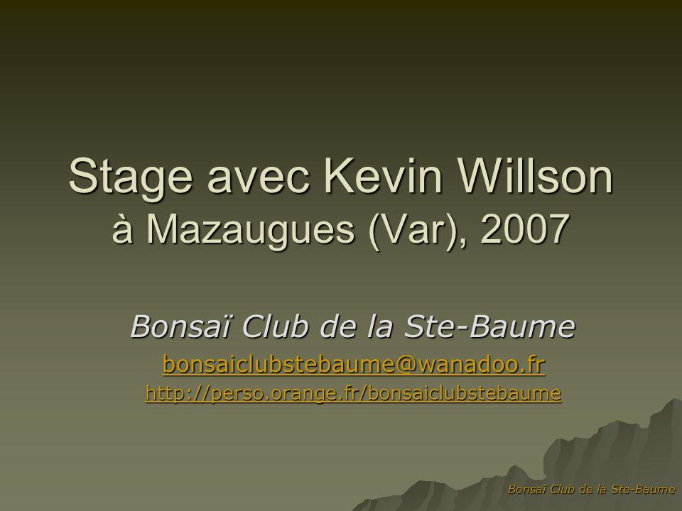 Bonsaï Club de la Ste-Baume Stage avec Kevin Willson à Mazaugues (Var), 2007 Bonsaï Club de la Ste-Baume bonsaiclubstebaume@wanadoo.fr http://perso.or