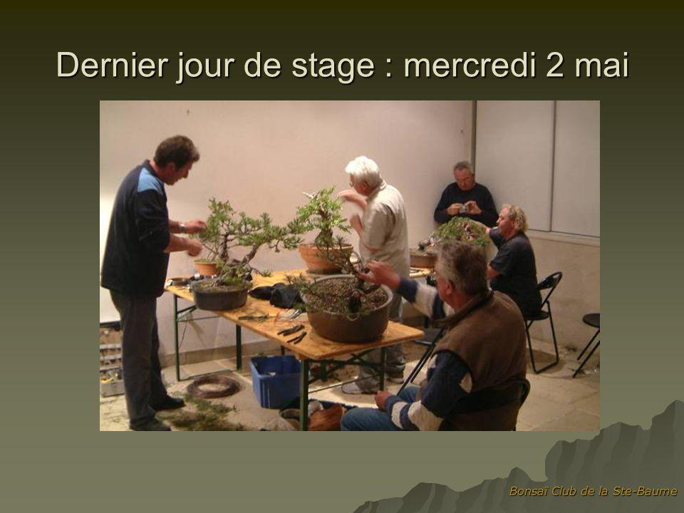 Bonsaï Club de la Ste-Baume Dernier jour de stage : mercredi 2 mai