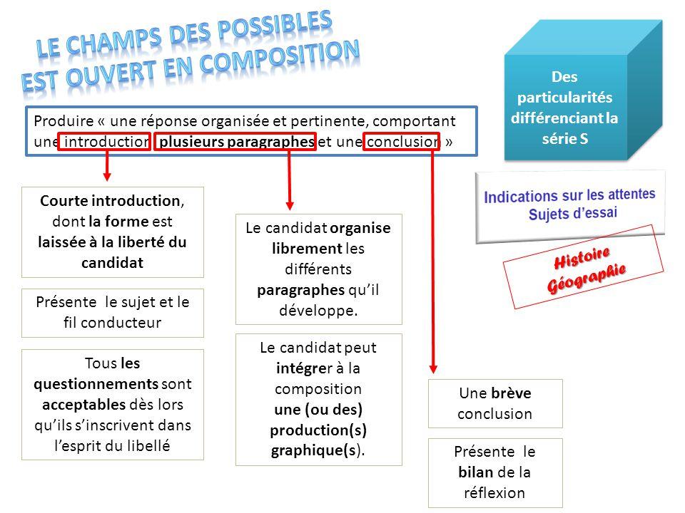 Le candidat peut intégrer à la composition une (ou des) production(s) graphique(s). Courte introduction, dont la forme est laissée à la liberté du can