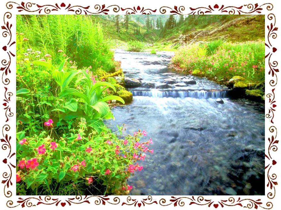 Petite mère,ma petite maman, grand cœur en son être, son chemin est tout fleuri, son chemin est orné de toutes les roses du monde. Chemin de mille cou