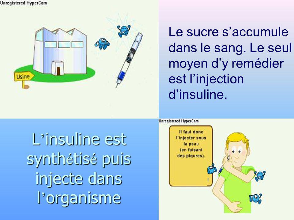 L insuline est synth é tis é puis injecte dans l organisme Le sucre saccumule dans le sang. Le seul moyen dy remédier est linjection dinsuline.