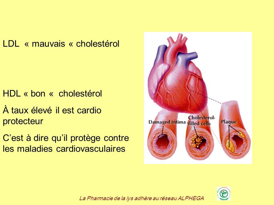 La Pharmacie de la lys adhère au réseau ALPHEGA LDL « mauvais « cholestérol HDL « bon « cholestérol À taux élevé il est cardio protecteur Cest à dire