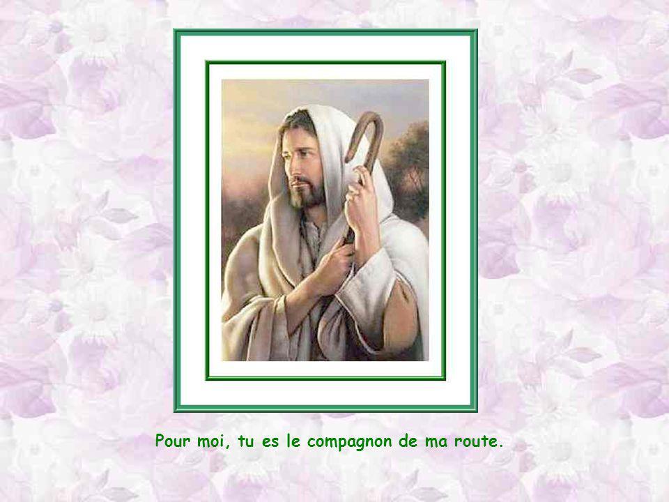 Tu en es le Fils bien-aimé en qui Il a mis toutes ses complaisances.
