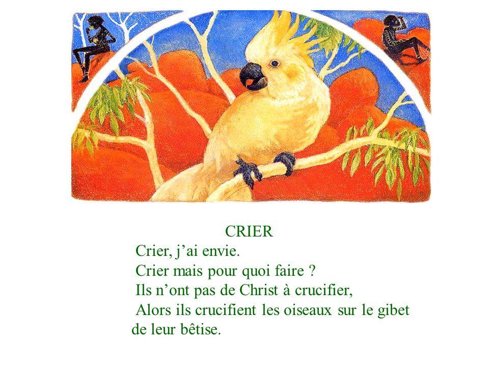CRIER Crier, jai envie.Crier mais pour quoi faire .