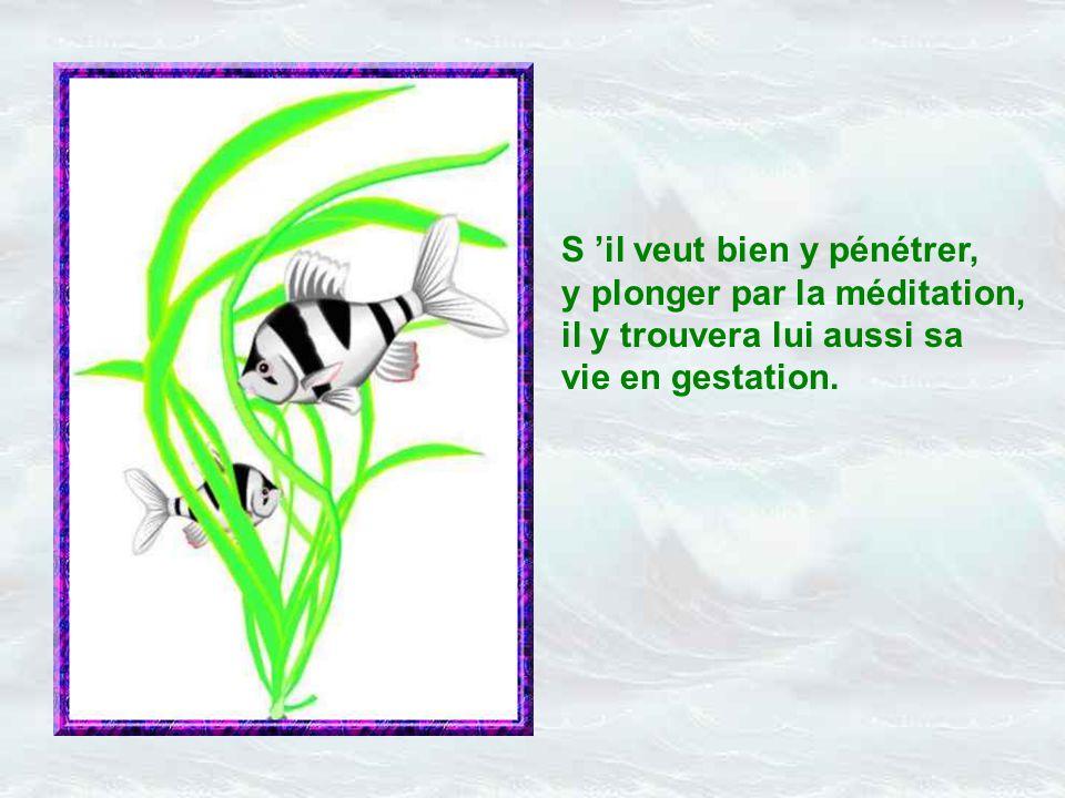 Poème : Aurélie Connoir Musique : « poème de Jean Racine » (G.Fauré) Jacky Questel - août 2004