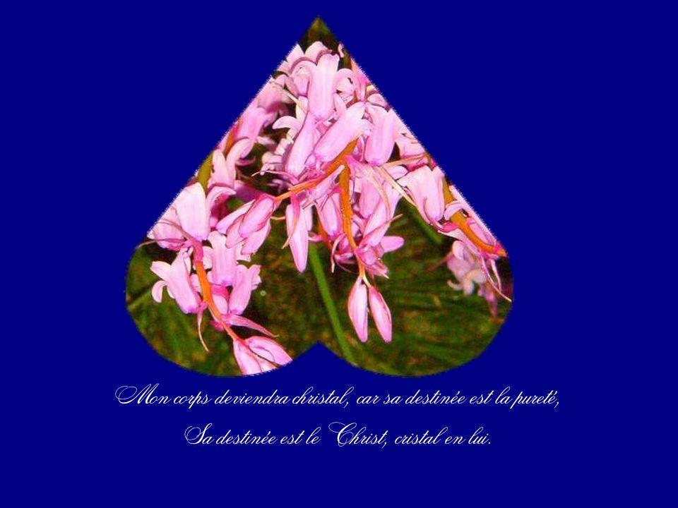Transparents, vivants de la vibration du cristal christal, Christ, Divinité pureté.