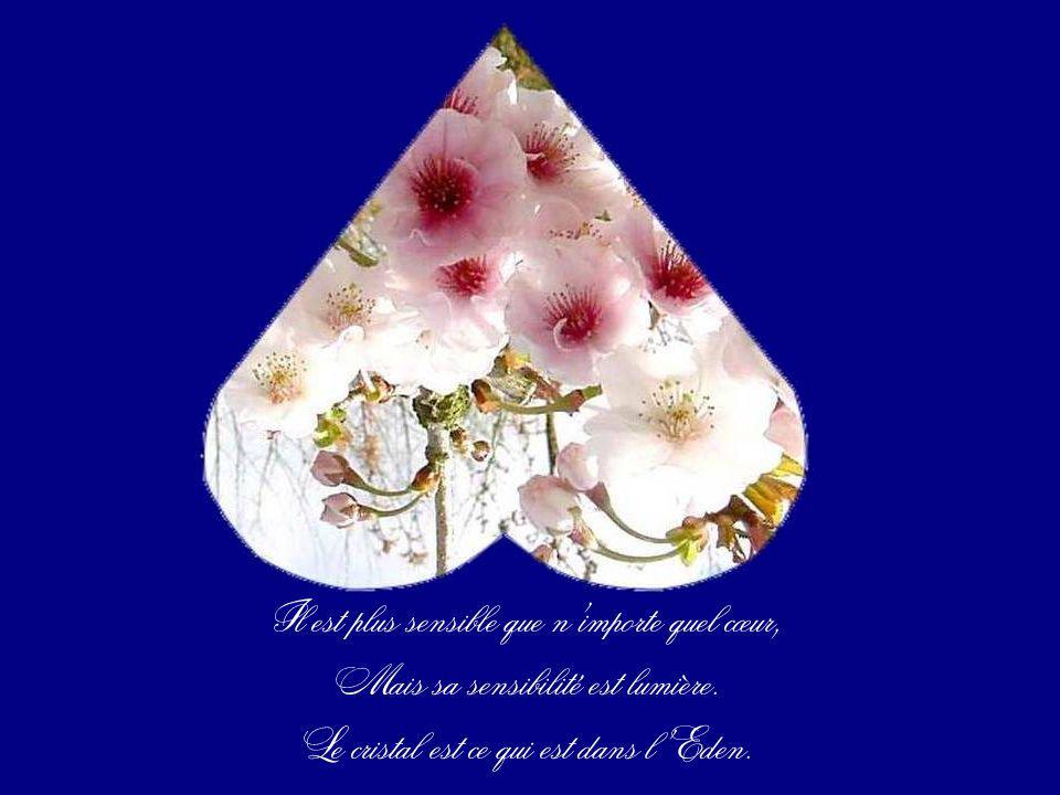 Rien ne peut laltérer. Blessé, le cœur de cristal reste pureté, Pure beauté.