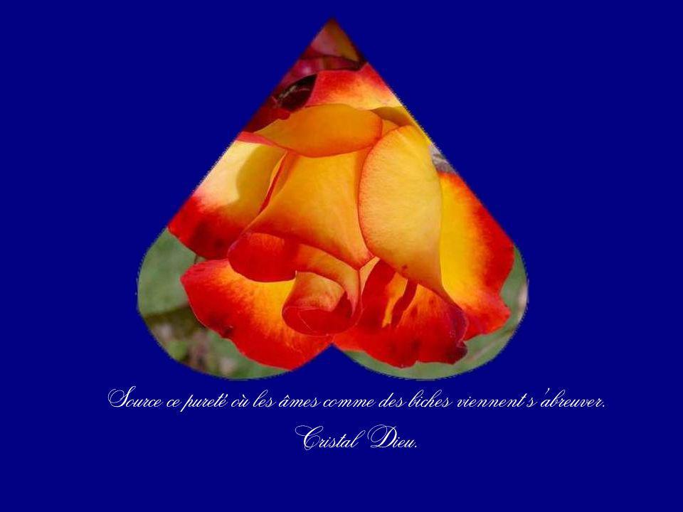 Il est plus sensible que nimporte quel cœur, Mais sa sensibilité est lumière.