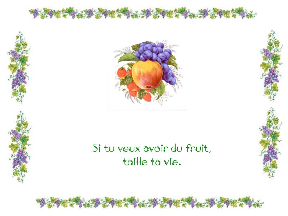 Si tu veux avoir du fruit, taille ta vie.