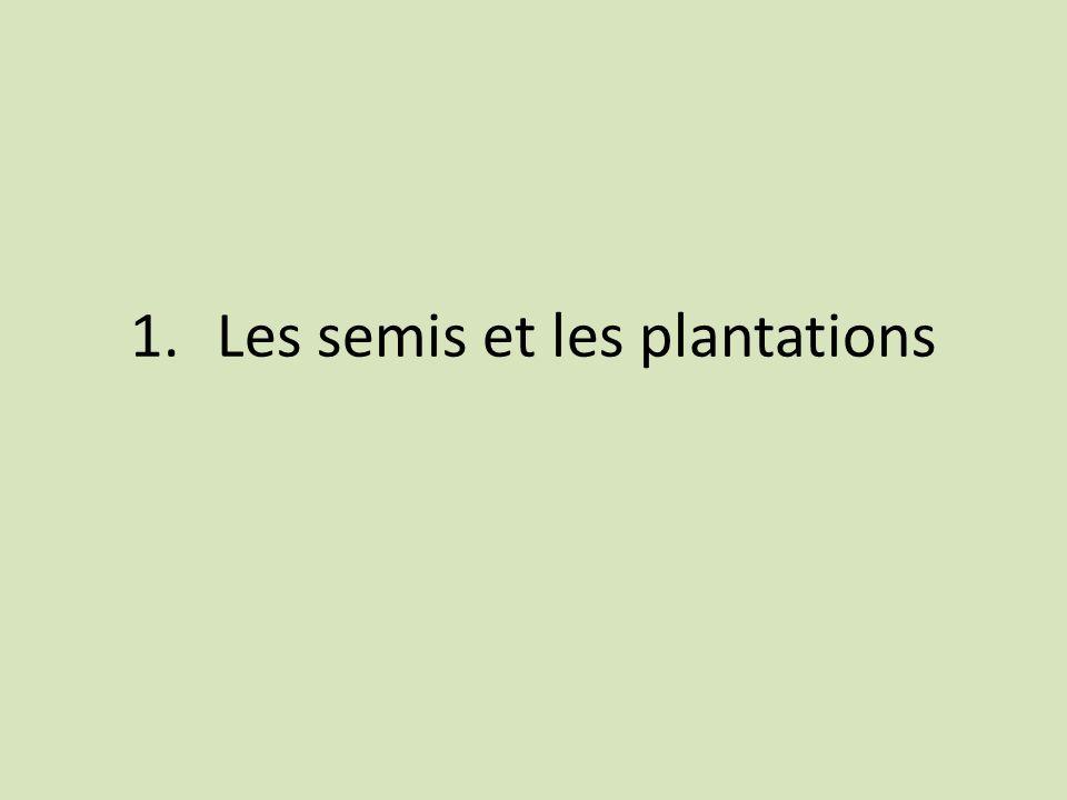 1.Les semis et les plantations