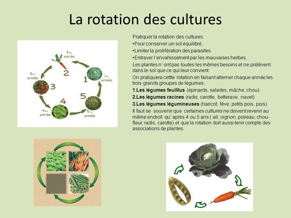 La rotation des cultures Pratiquer la rotation des cultures: Pour conserver un sol équilibré, Limiter la prolifération des parasites Entraver lenvahissement par les mauvaises herbes, Les plantes n ont pas toutes les mêmes besoins et ne prélèvent dans le sol que ce qui leur convient.