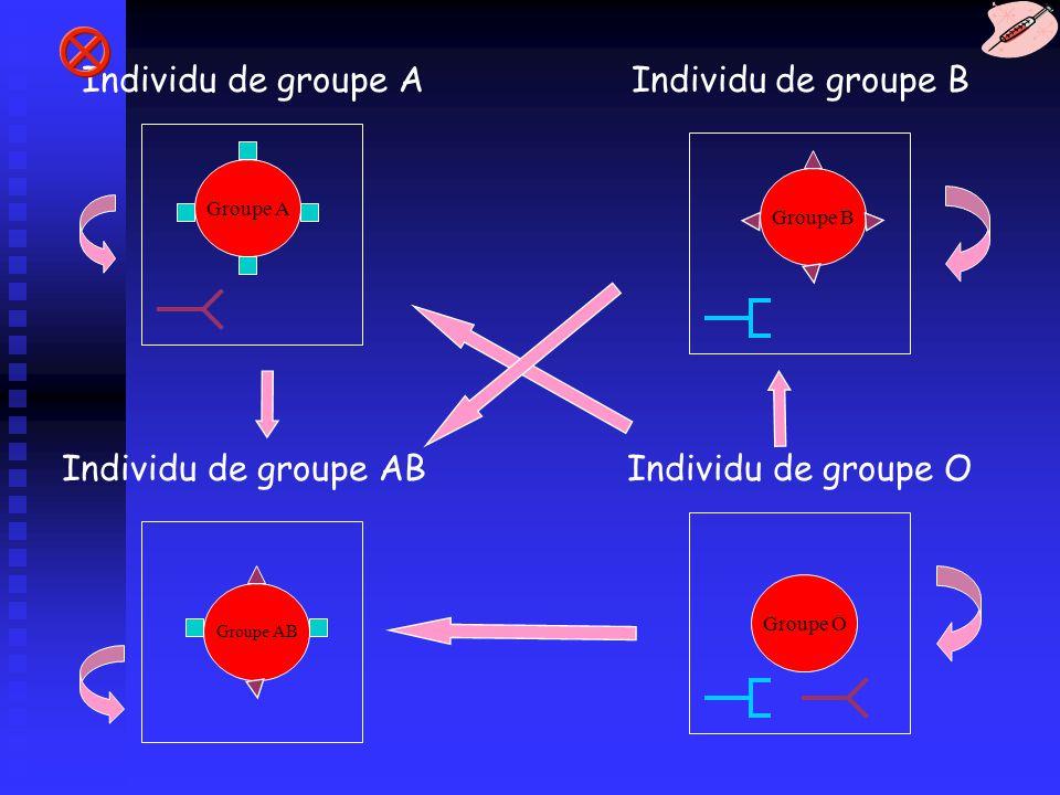 Groupe A Groupe AB Groupe O Groupe B Individu de groupe A Individu de groupe AB Individu de groupe B Individu de groupe O