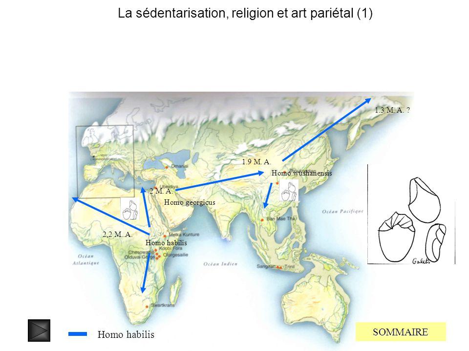 En effet sur lîle de flores dans larchipel indonésien en Octobre 2004 furent découverts les restes dun hominien qui vécu entre 38000 et 18000 ans. Cel