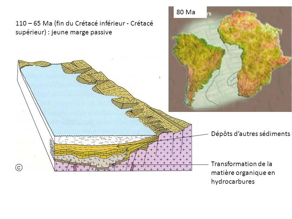 110 – 65 Ma (fin du Crétacé inférieur - Crétacé supérieur) : jeune marge passive 110 Ma Dépôts dautres sédiments 80 Ma Transformation de la matière organique en hydrocarbures