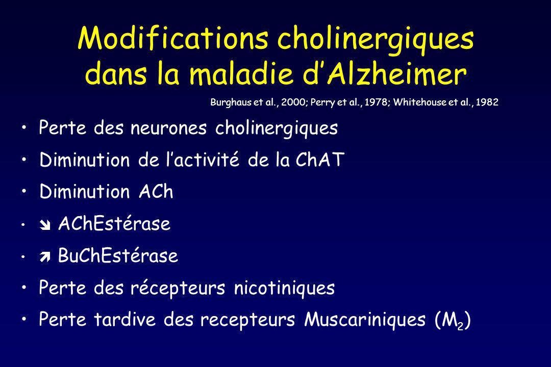 Modifications cholinergiques dans la maladie dAlzheimer Perte des neurones cholinergiques Diminution de lactivité de la ChAT Diminution ACh AChEstéras