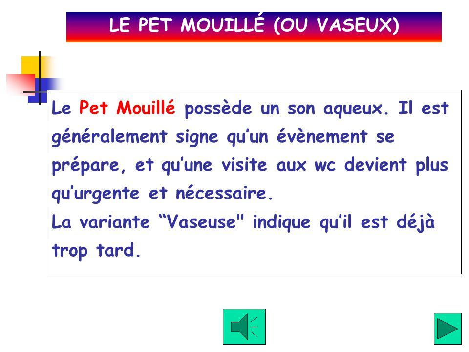 Le Pet Toussé arrive quand le pétomane (le praticant du pet) essaye de le dissimuler avec de la toux. Un de mes amis lachait fréquement ces pets lorsq