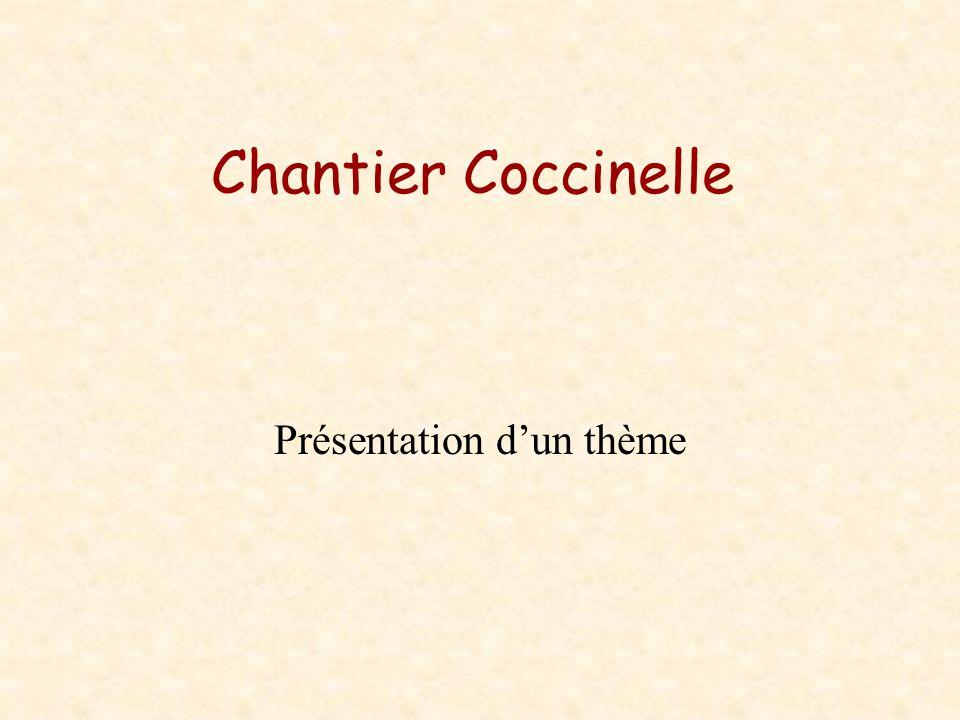 Chantier Coccinelle Présentation dun thème