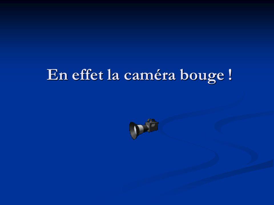 En effet la caméra bouge !