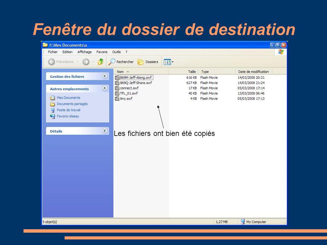 Fenêtre du dossier de destination Les fichiers ont bien été copiés