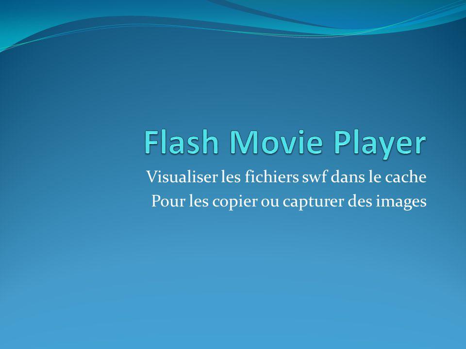 Visualiser les fichiers swf dans le cache Pour les copier ou capturer des images