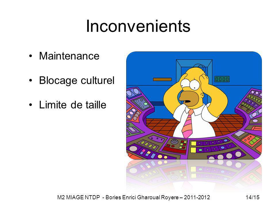 Inconvenients Maintenance Blocage culturel Limite de taille 14/15 M2 MIAGE NTDP - Bories Enrici Gharoual Royere – 2011-2012