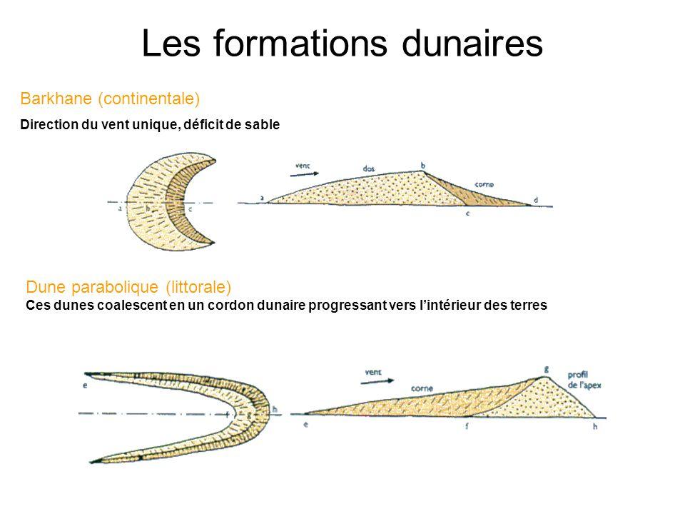 Les formations dunaires Barkhane (continentale) Direction du vent unique, déficit de sable Dune parabolique (littorale) Ces dunes coalescent en un cor