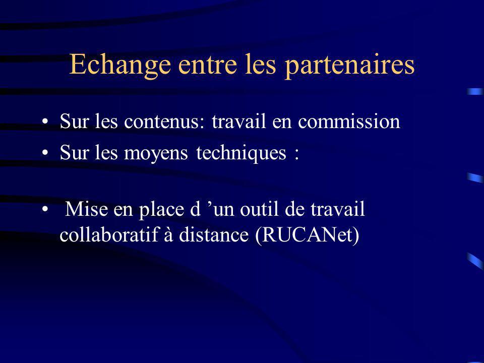 Echange entre les partenaires Sur les contenus: travail en commission Sur les moyens techniques : Mise en place d un outil de travail collaboratif à distance (RUCANet)