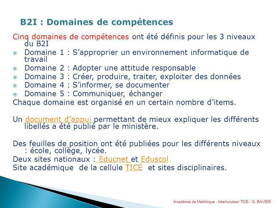Cinq domaines de compétences ont été définis pour les 3 niveaux du B2I Domaine 1 : Sapproprier un environnement informatique de travail Domaine 2 : Ad