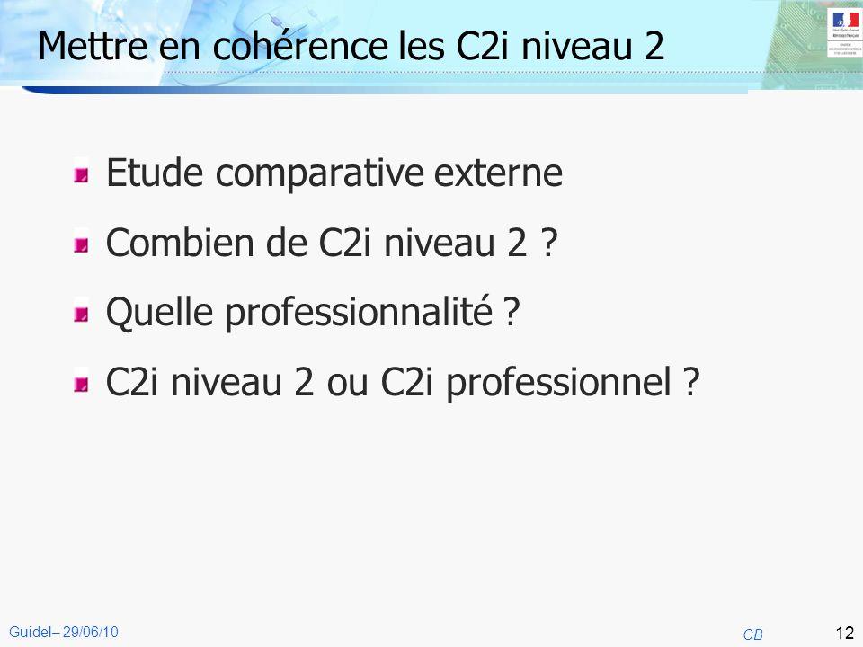 12 CB Guidel– 29/06/10 Mettre en cohérence les C2i niveau 2 Etude comparative externe Combien de C2i niveau 2 ? Quelle professionnalité ? C2i niveau 2