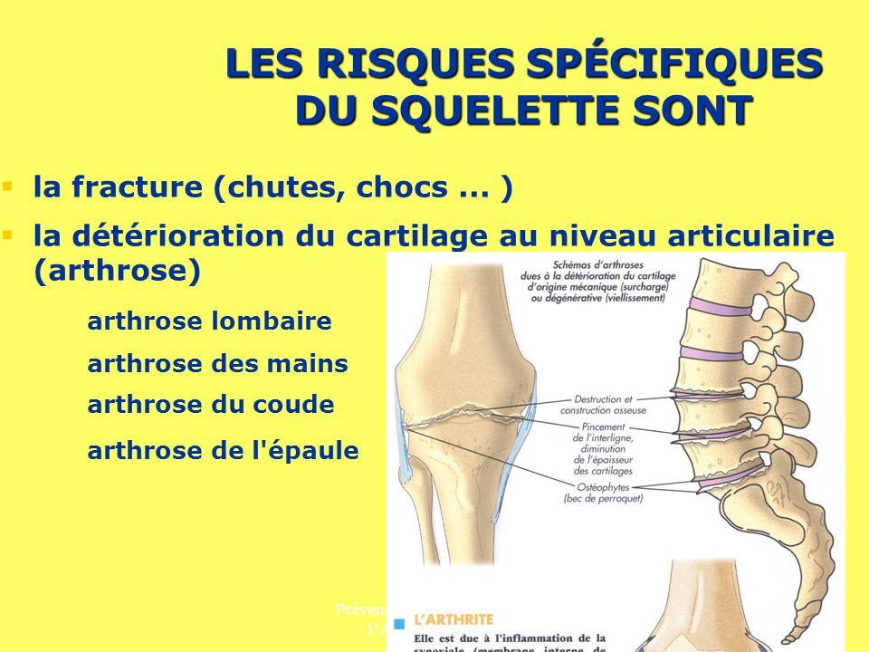 Prévention des Risques liés à lActivité Physique 4 LES RISQUES SPÉCIFIQUES DU SQUELETTE SONT la fracture (chutes, chocs... ) la détérioration du carti