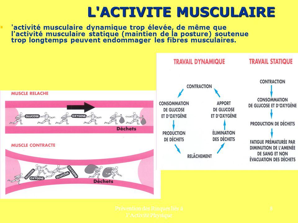 Prévention des Risques liés à lActivité Physique 8 L'ACTIVITE MUSCULAIRE 'activité musculaire dynamique trop élevée, de même que l'activité musculaire
