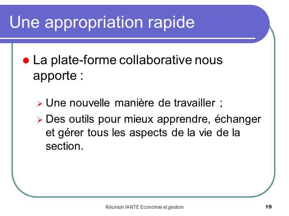 Réunion IANTE Economie et gestion19 Une appropriation rapide La plate-forme collaborative nous apporte : Une nouvelle manière de travailler ; Des outi