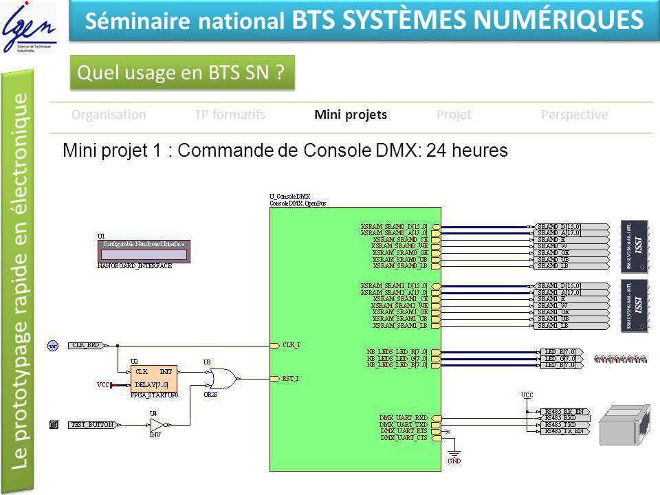 Eléments de constat Séminaire national BTS SYSTÈMES NUMÉRIQUES Quel usage en BTS SN ? OrganisationTP formatifsMini projetsProjetPerspective Mini proje