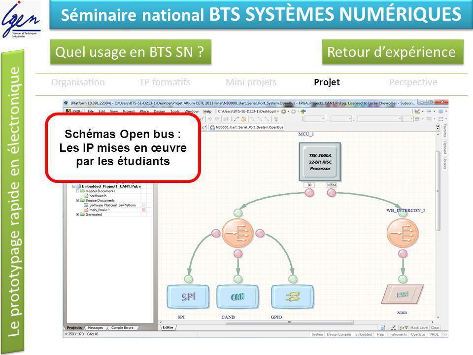 Eléments de constat Séminaire national BTS SYSTÈMES NUMÉRIQUES Quel usage en BTS SN ? OrganisationTP formatifsMini projetsProjetPerspective Retour dex