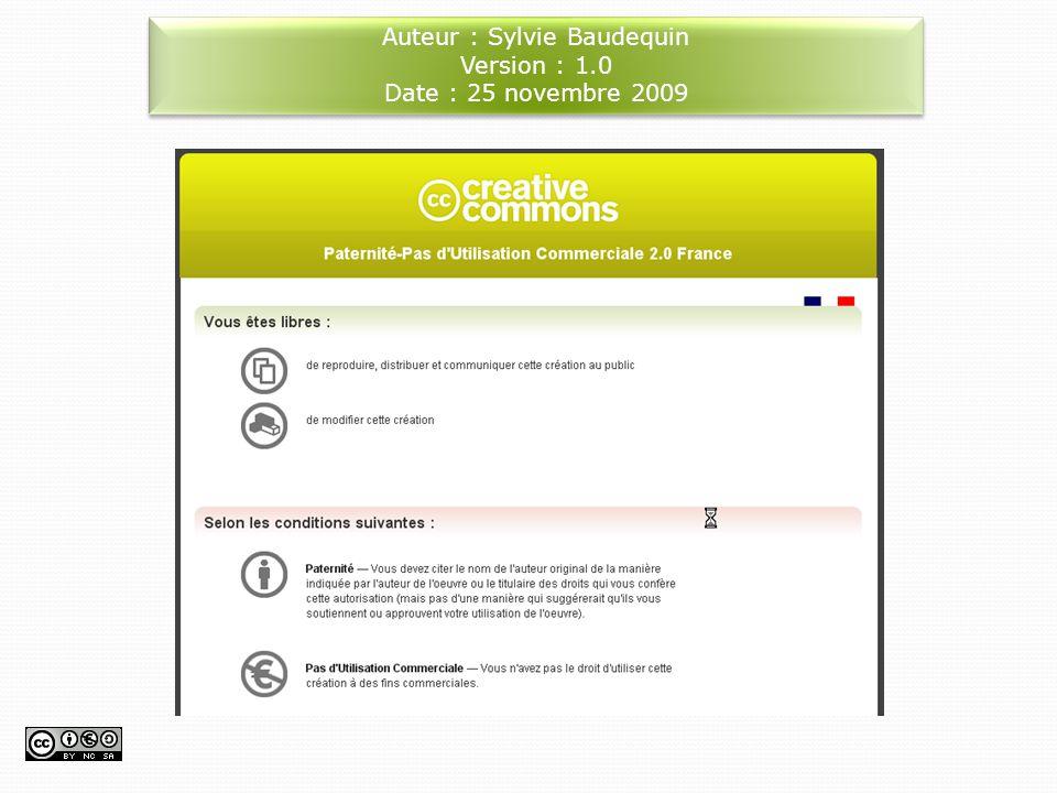 Auteur : Sylvie Baudequin Version : 1.0 Date : 25 novembre 2009 Auteur : Sylvie Baudequin Version : 1.0 Date : 25 novembre 2009