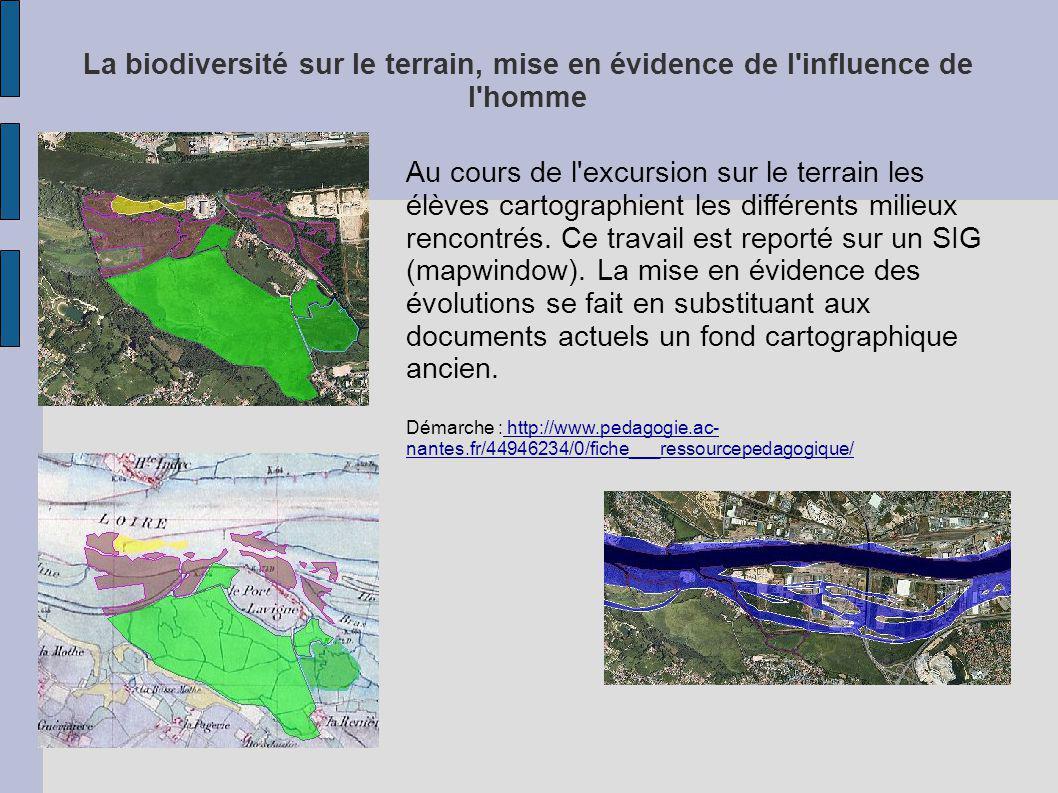 La biodiversité sur le terrain, mise en évidence de l'influence de l'homme Au cours de l'excursion sur le terrain les élèves cartographient les différ