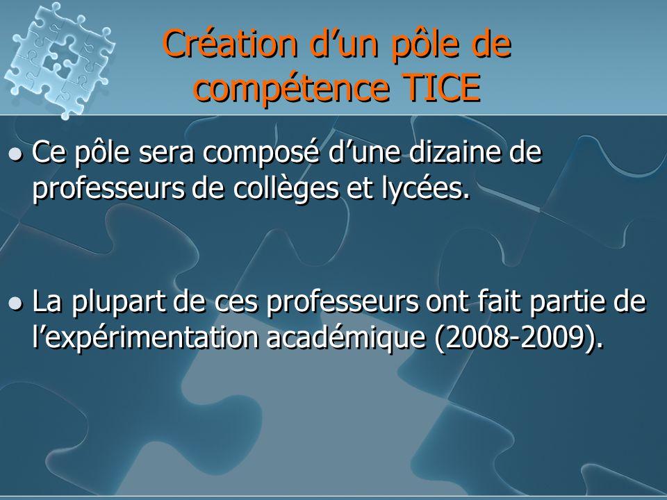 Création dun pôle de compétence TICE Ce pôle sera composé dune dizaine de professeurs de collèges et lycées.