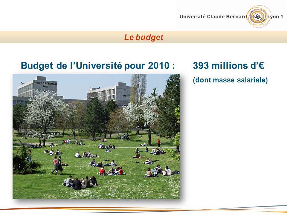 Budget de lUniversité pour 2010 : 393 millions d (dont masse salariale) Le budget