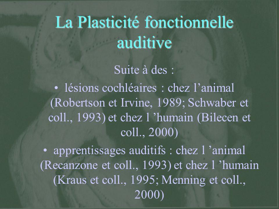 La Plasticité fonctionnelle auditive Suite à des : lésions cochléaires : chez lanimal (Robertson et Irvine, 1989; Schwaber et coll., 1993) et chez l h
