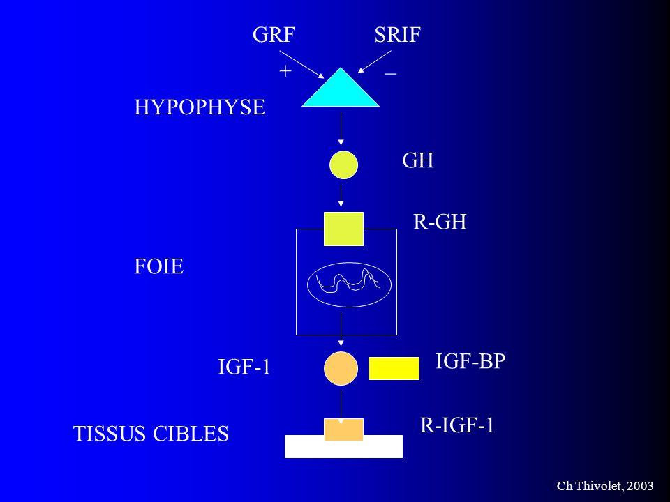 Ch Thivolet, 2003 HYPOPHYSE FOIE TISSUS CIBLES GH R-GH IGF-1 R-IGF-1 IGF-BP GRF + SRIF _