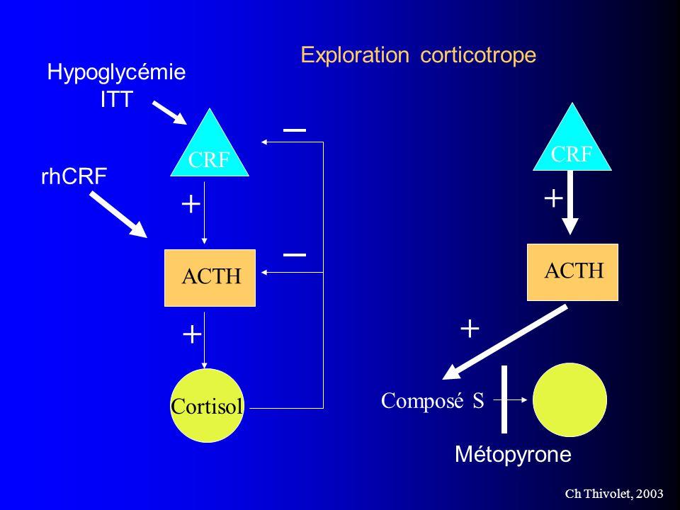 Ch Thivolet, 2003 CRF Cortisol ACTH + + rhCRF Hypoglycémie ITT Composé S Métopyrone CRF ACTH + + Exploration corticotrope